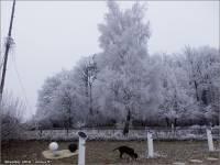 12-31-Silvester-2016-minus-5-Grad