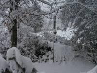 18-Vogel-Futtersilo-im-Schnee