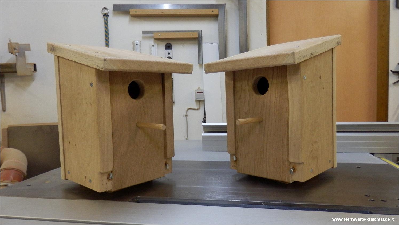 05 starenkasten. Black Bedroom Furniture Sets. Home Design Ideas