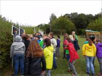 11-Grundschule-Oberoewisheim